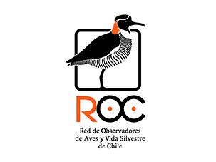 ROC-red-de-observadores-aves-silvestres