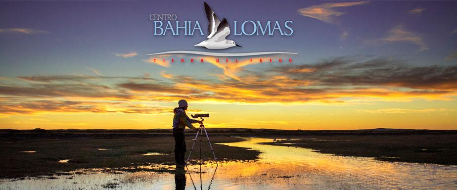bahía-lomas-u-santo-tomas