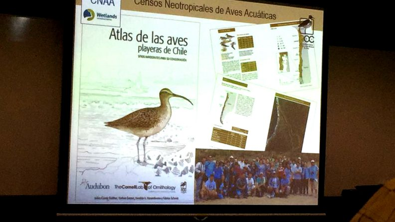 atlas de las aves